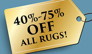 40-75% off all area rugs this month only!