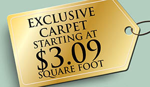 Exclusive Karastan carpet starting at $3.09 sq.ft. this month only!